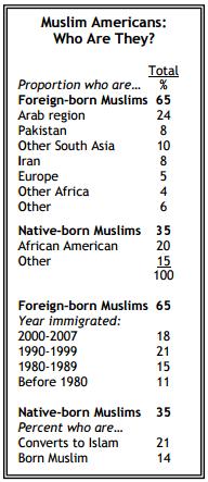 Muslim American Demographics